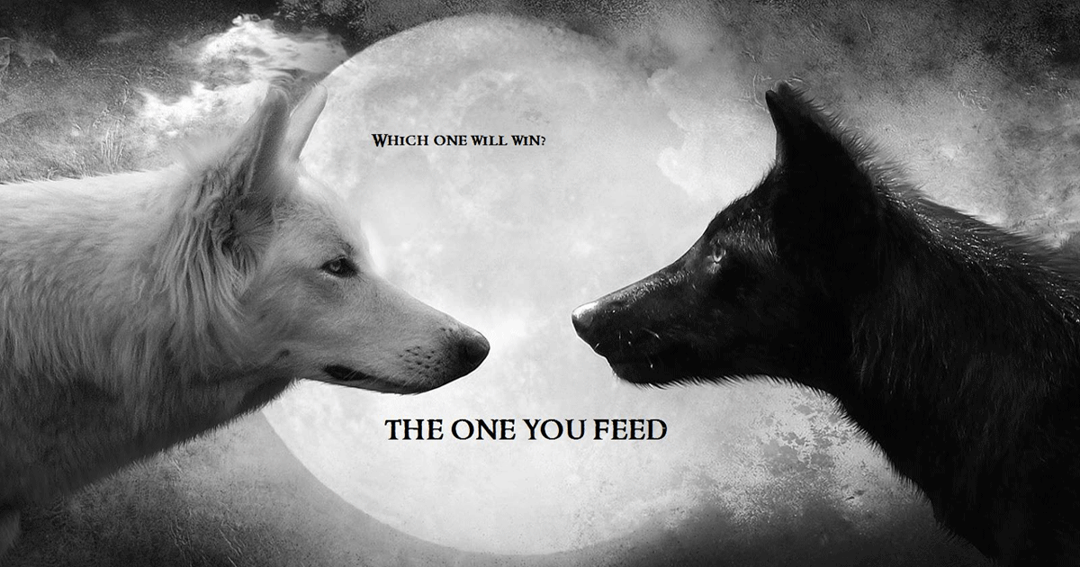 Which Wolf will Win